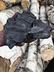 Продам высококачественный древесный уголь (берёза) для гриля и мангала